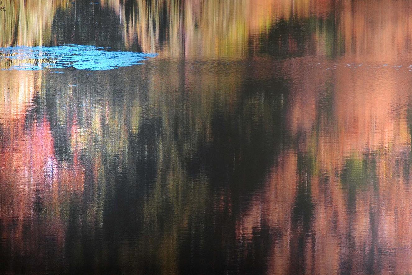 Camouflage  Fine art Print metallic on Aludibond  130x180 cm, 2012