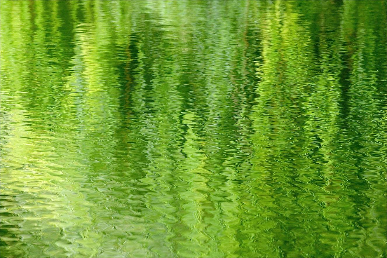 Green Light I  Chromira pearl on Aludibond  90x130 cm, 2011/2019