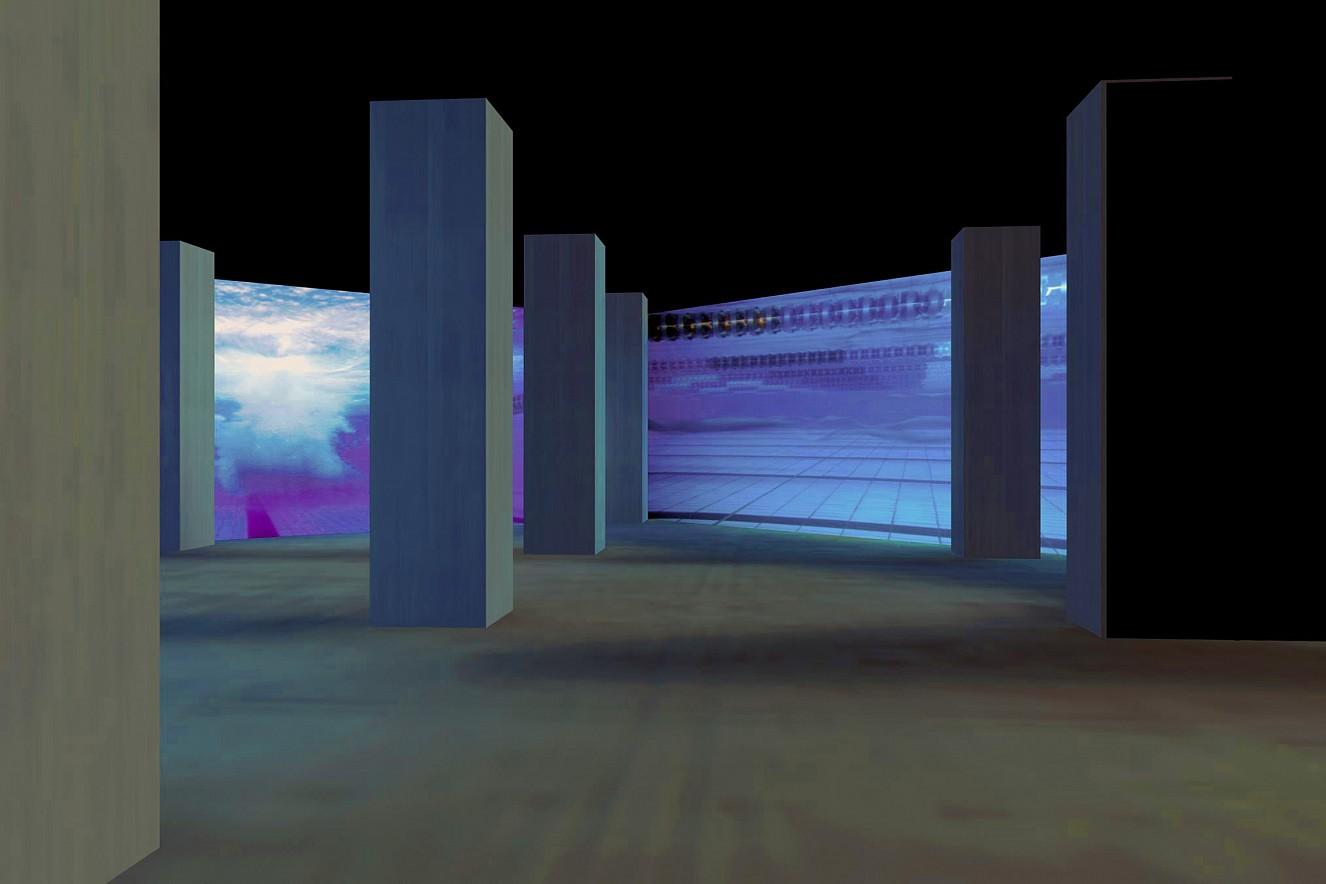 Swarm- Installation  Cibachrome under glass  80x200 cm, 2002/2019