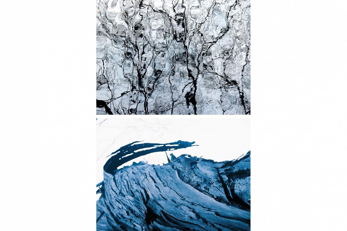 Ariel and Siehdichum  each 60x90 cm, Fine Art print metallic on Aludibond   and under glass, Edition Serie Gewächs