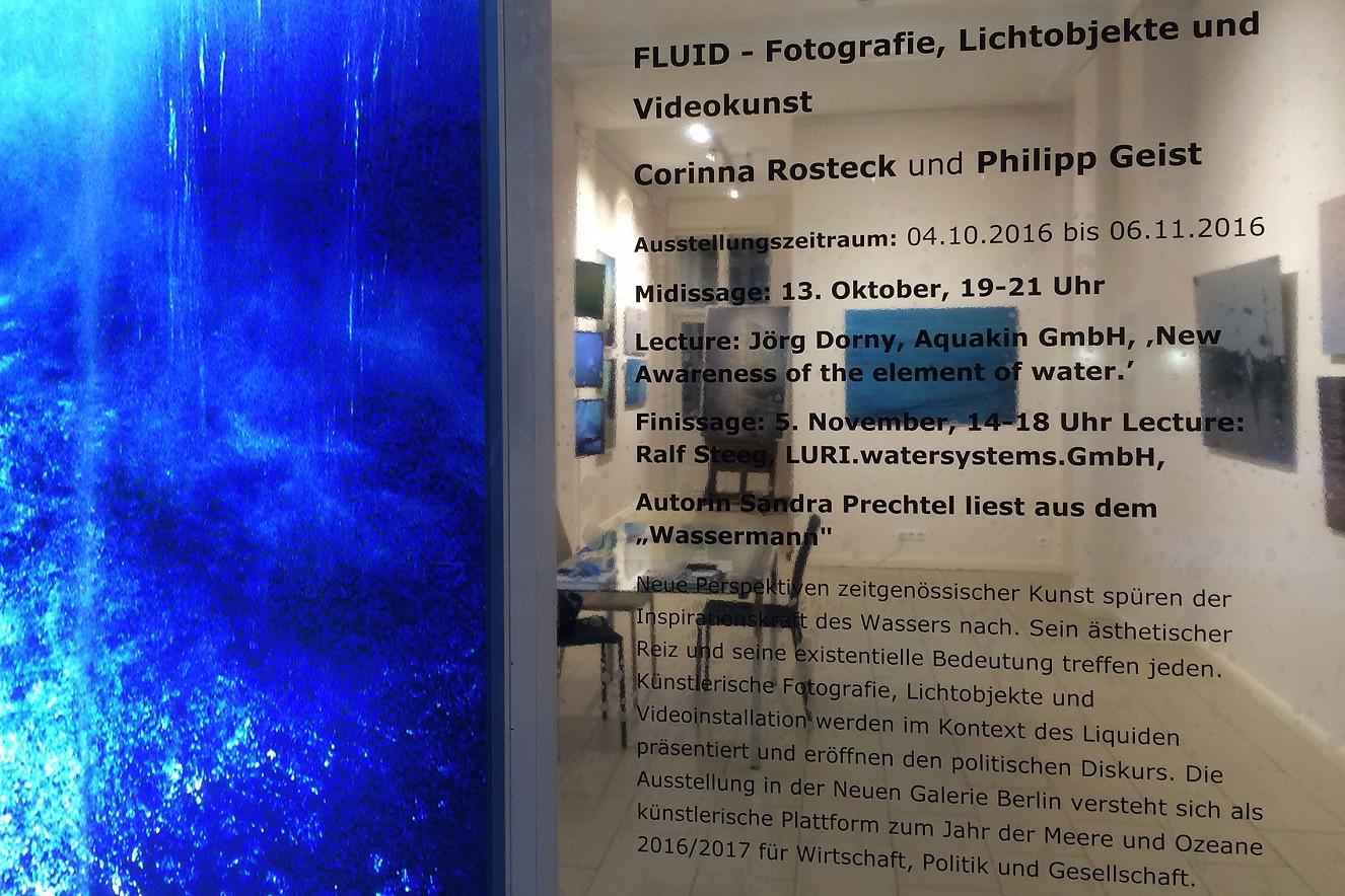 Fluid - Spring Foto -und Videoinstallation mit Philipp Geist Neue Galerie Berlin, 2016