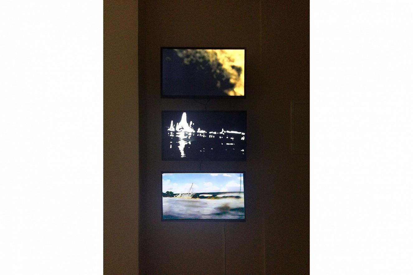 Riverine Zone  Videoinstallation von Philipp Geist  Neue Galerie Berlin, 2016