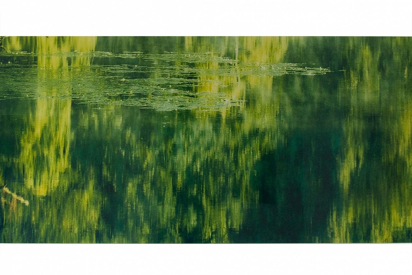 Halenfog Green  Fine art Print metallic on Aludibond  under glass, 75x180 cm, Galerie Bergner & Job