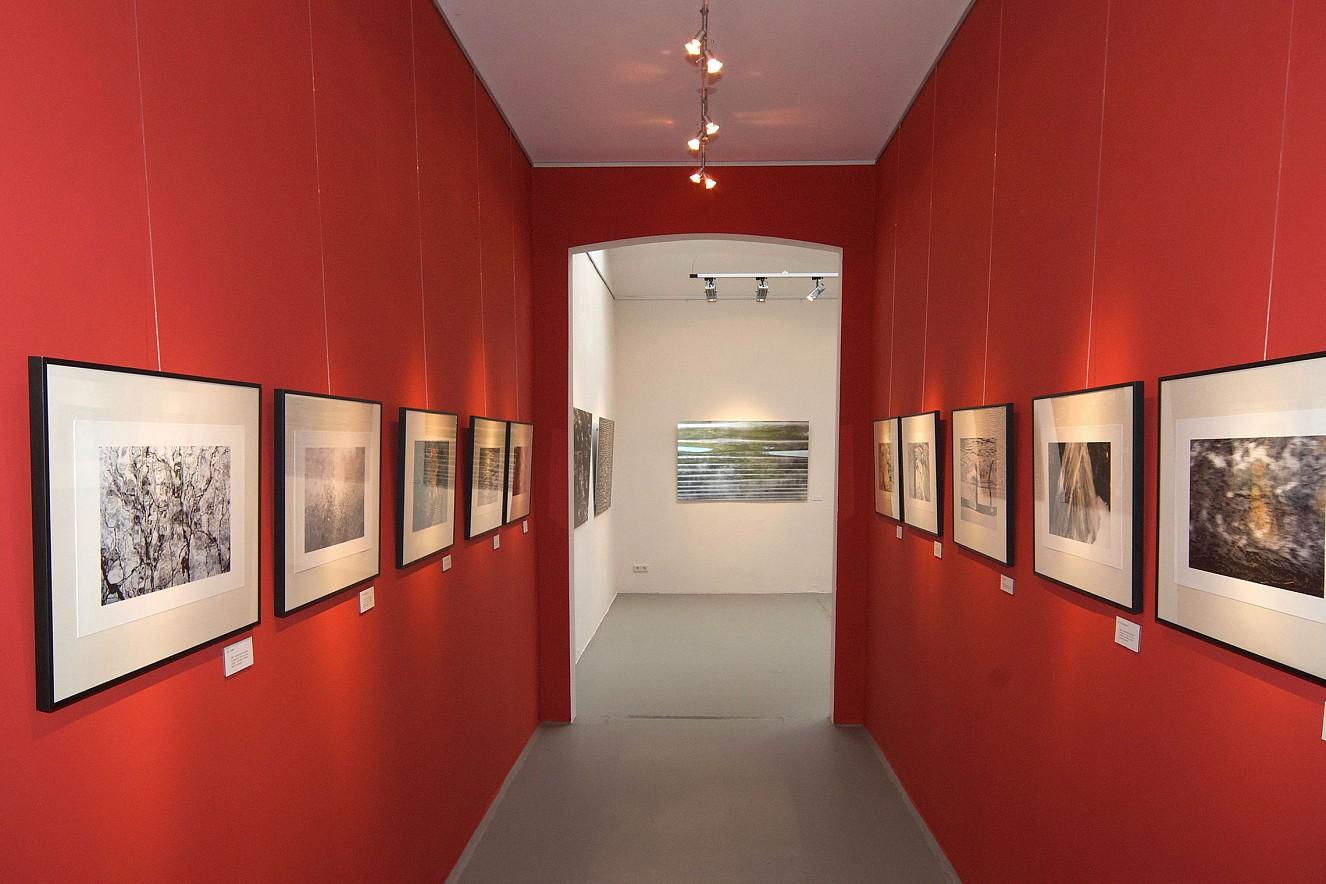 Lichte Wasser - Kormoran   und je 30x45 cm,m Iris Glicée auf Torchon  s/w gerahmt unter Glas, Galerie Himmel, Dresden