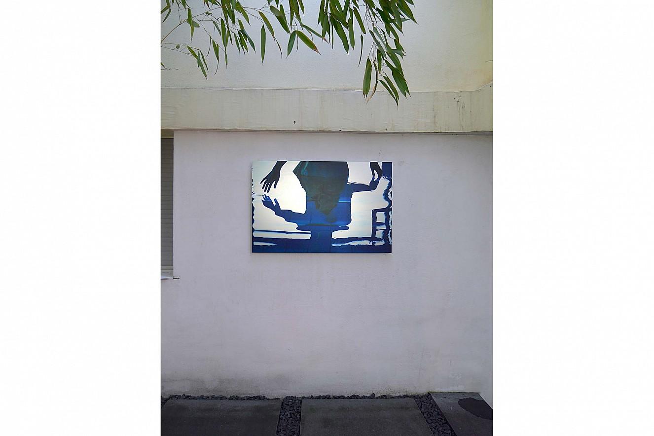Tintig  65x100 cm, Outdoor- Hängung  Fine Art Print Metallic auf Aludibond