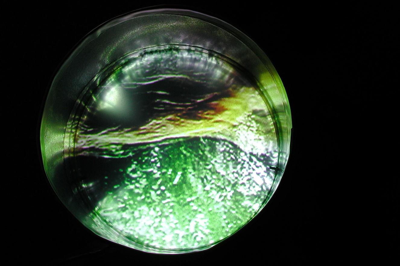 Tonnehaare  Videostill, Video in der Tonne  Ø 80cm, 2001