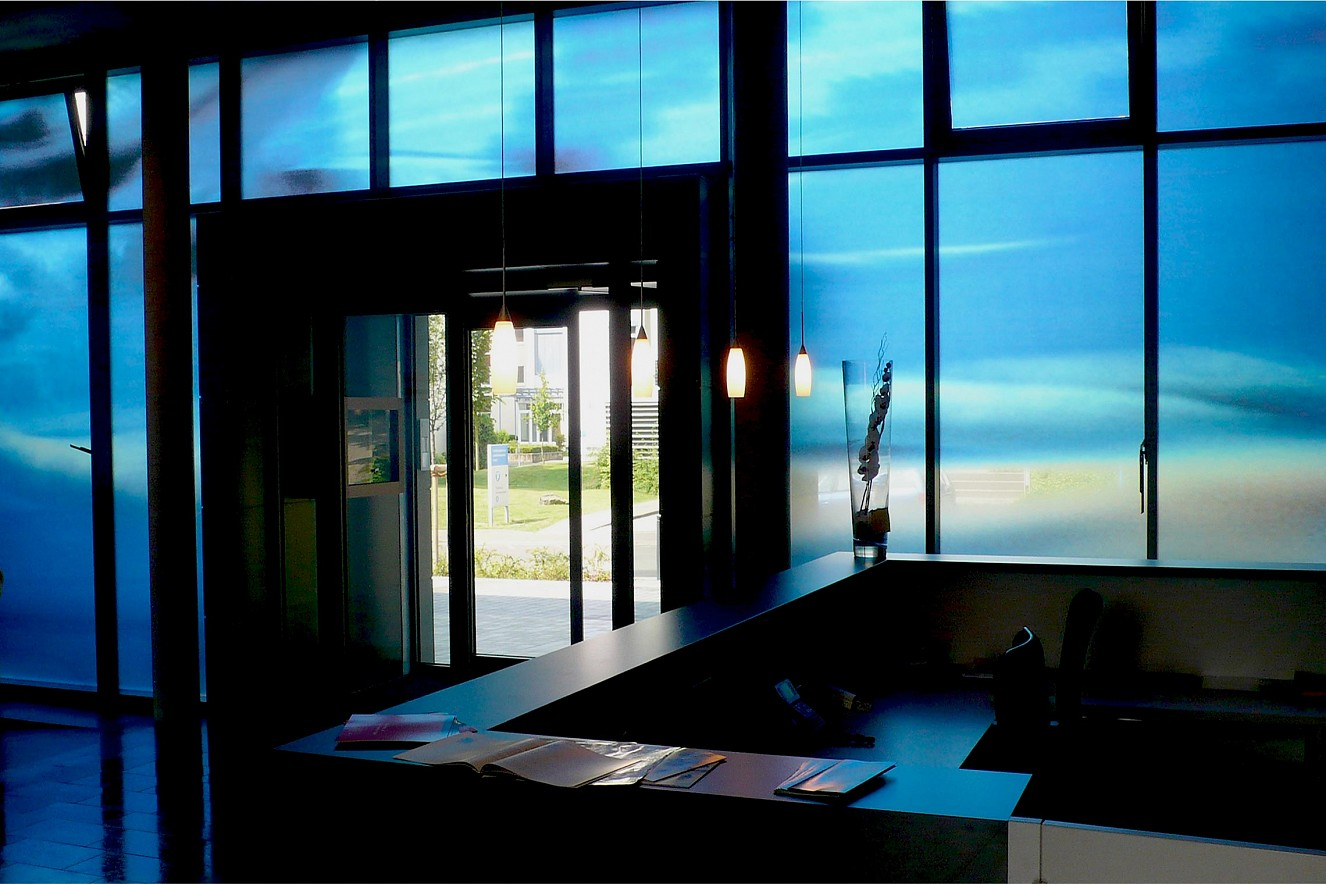 Swarm  Photos on glass windows  ca. 44 qm, Carl Oelemann Institut