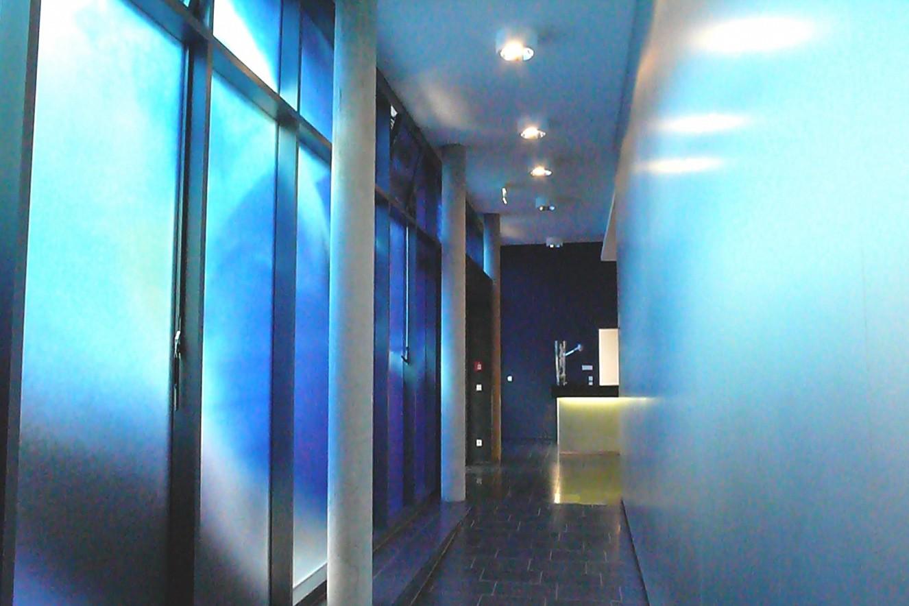 Swarm Rampe  Photos on glass windows  ca. 44 qm, 2008  permanent Installation  Entrance Hall Carl Oelemann Institut