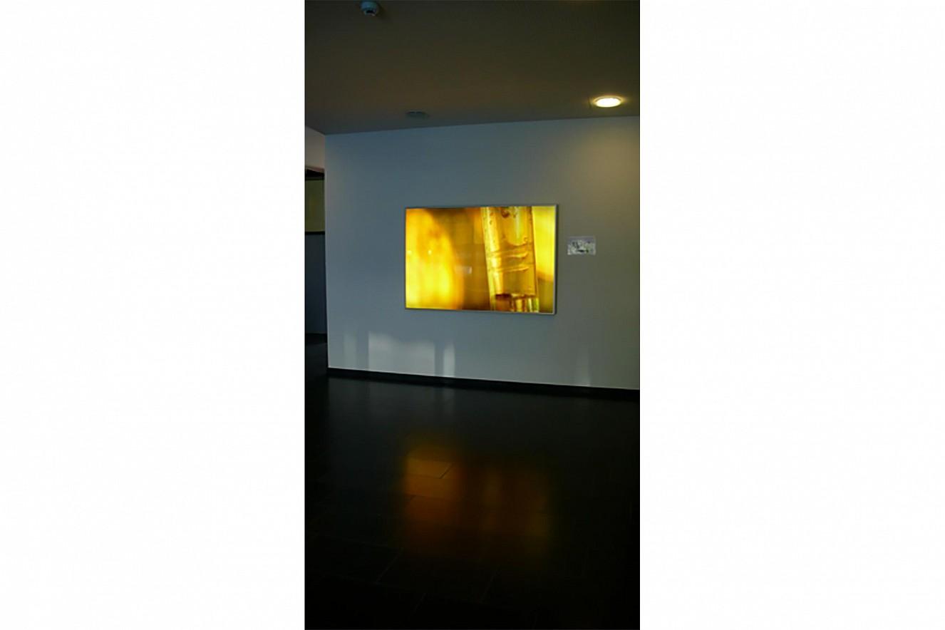 Circular  Endura translucent in Lightbox  150x 200 cm, Carl Oelemann Institut