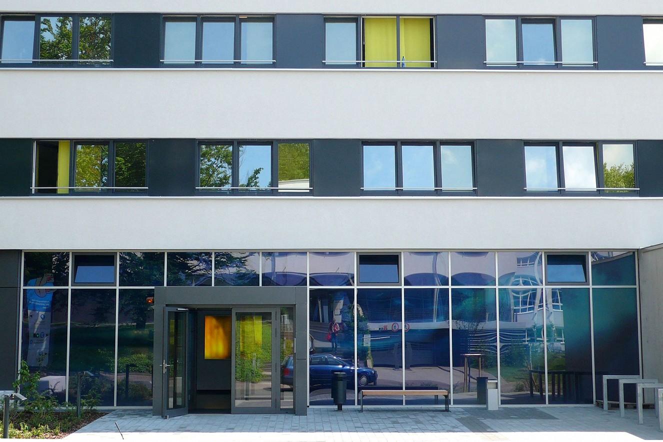 Swarm  Facade, Photos on glass windows  ca. 44 qm, Carl Oelemann Institut