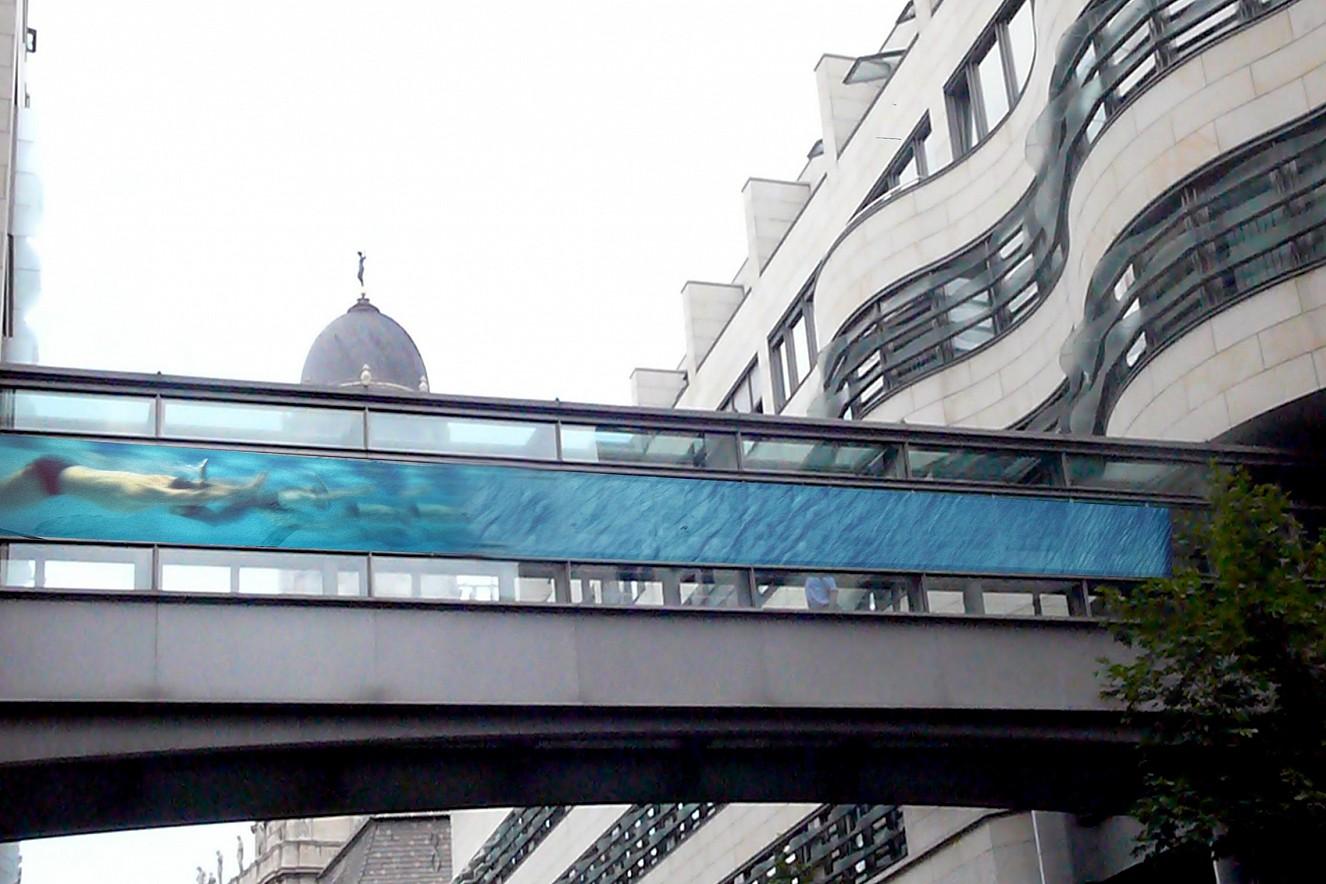 Swarm- Swimmer   photos on glasswindows, outdoor Bridge   ca. 28 qm, Passage Berliner Wasserbetriebe
