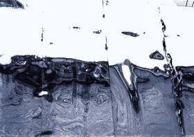 roosevelt, Foto auf Metall, 90x130cm ©C.Rosteck